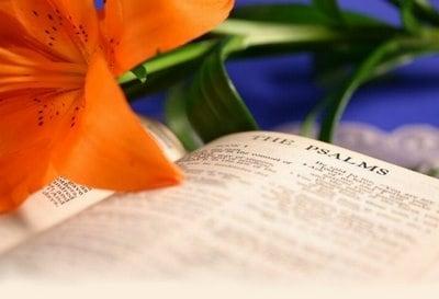Oração para Dia de Finados