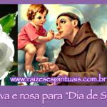 """Banho de erva e rosa para """"Dia de Santo Antônio"""""""