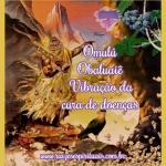 Omulú-Obaluaiê – vibração da cura de doenças