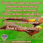Animais merecem respeito!