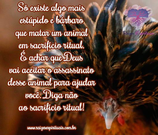 Matar um animal em sacrifício ritual