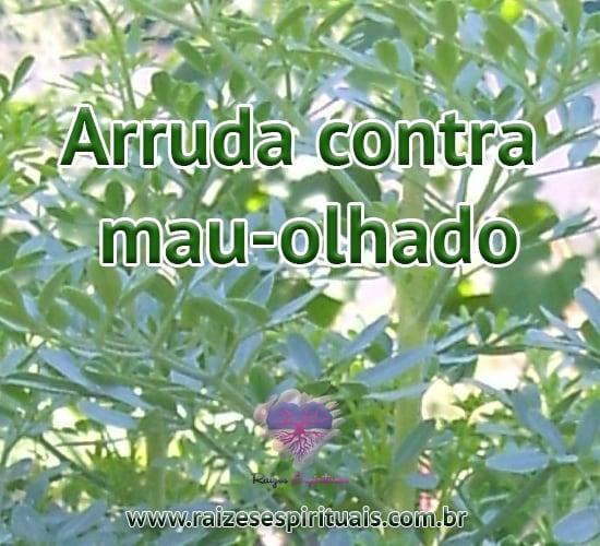 Arruda é uma folha de grande ajuda para equilibrarmos nossas energias e combatermos males que nos impedem de alcançar os objetivos e nossa felicidade.