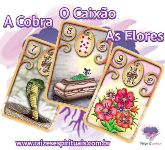 A Cobra, O Caixão e As Flores - no Baralho Cigano, cada uma delas, combinada com um naipe, tem o seu significado único e preciso.