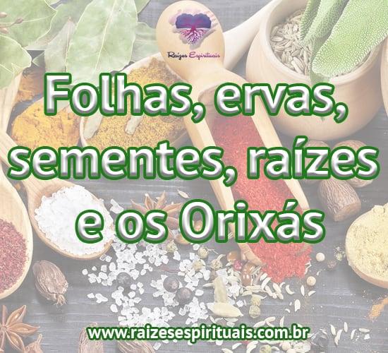 Folhas, ervas, sementes, raízes e os Orixás