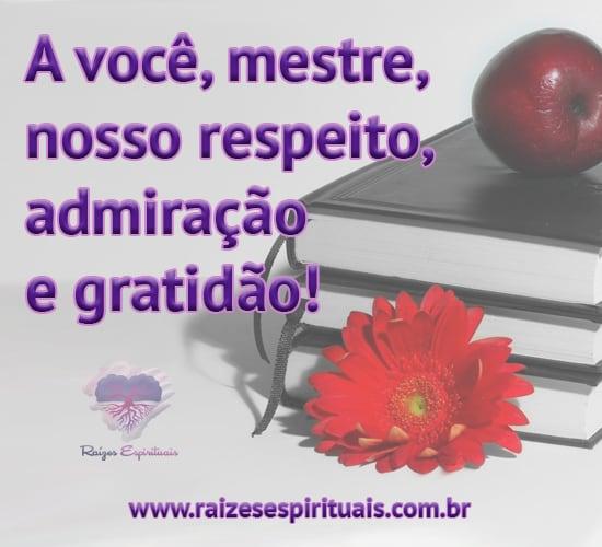 Mestre - a você nossa gratidão e carinho