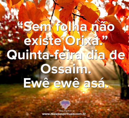 Quinta-feira dia de Ossaim
