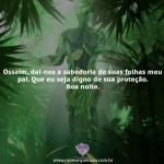 Ossaim, sabedoria de suas folhas