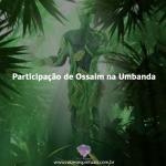 Participação de Ossaim na Umbanda