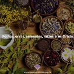Folhas, ervas e os Orixás