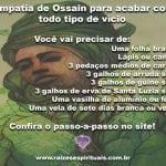 Simpatia de Ossain para acabar com todo tipo de vício