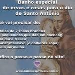 Banho especial de ervas e rosas para o dia de Santo Antônio