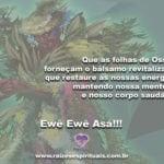 Que tenhamos sempre as bênçãos e proteção das folhas de Ossain!
