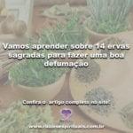 Vamos aprender sobre 14 ervas sagradas para fazer uma boa defumação