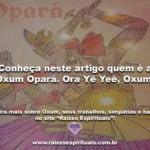 Conheça neste artigo quem é a Oxum Opará. Ora Yê Yê, Oxum!
