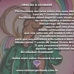 Vem chegando o dia de Oxumarê! Aprenda uma oração do Senhor da Renovação