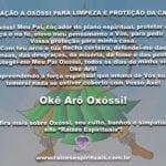 Aprenda uma forte oração de Oxóssi para limpeza e proteção de nossa casa!