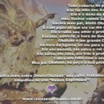 Segunda-feira é de Omulú! Dia de pedir proteção e saúde para todos. Atotô!!!