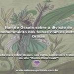 Itan de Ossain sobre a divisão do conhecimento das folhas com os outros Orixás