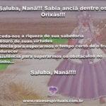 Anciã dos Orixás, dai-nos proteção e sabedoria! Saluba, Nanã!!!