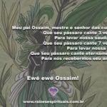 Confira uma pequena prece a Ossaim, senhor das curas das folhas!