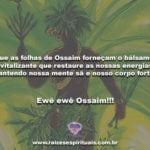 Que as folhas de Ossaim forneçam o bálsamo revitalizante!