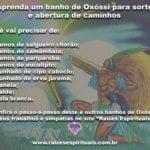 Aprenda um banho de Oxóssi para sorte e abertura de caminhos