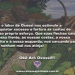 Que o labor de Oxóssi nos estimule a conquistar sucesso e fartura!