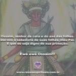 Ossaim, senhor da cura e do axé das folhas. Ewê ewê Ossaim!!!