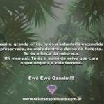 Ossaim, grande orixá, tu és a sabedoria escondida e preservada…