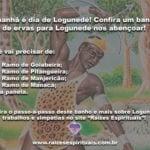 Amanhã é dia de Logunedé! Confira um banho de ervas para Logunedé nos abençoar!