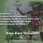 Que Ossaim com suas folhas sagradas seja sempre fonte de cura para nós