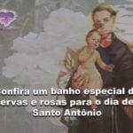 Confira um banho especial de ervas e rosas para o dia de Santo Antônio