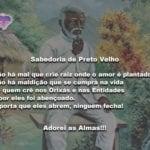 Sabedoria de Preto Velho: Não há mal que crie raiz onde o amor é plantado!