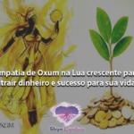 Simpatia de Oxum na Lua crescente para atrair dinheiro e sucesso para sua vida
