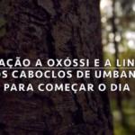 Oração a Oxóssi e a Linha de Caboclos na Umbanda para começar dia