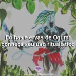 Folhas e ervas de Ogum: conheça seu uso ritualístico