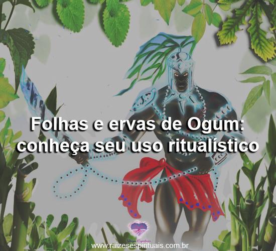 Folhas e ervas de Ogum