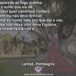 Não mexa com Dona Figueira, de brincadeira ela não é!