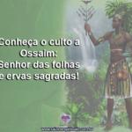 Conheça o culto a Ossaim, Senhor das folhas e ervas sagradas!