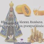 Simpatia de Nossa Senhora Aparecida para prosperidade