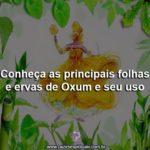 Conheça as principais folhas e ervas de Oxum e seu uso