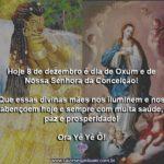 Hoje, dia 8 de dezembro, é dia de Oxum e de Nossa Senhora da Imaculada Conceição!