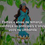 Folhas e ervas de Iemanjá: conheça as principais e seus usos na Umbanda