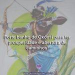 Forte banho de Oxóssi para ter prosperidade e abertura de caminhos!