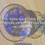 Anil: saiba mais sobre esse poderoso elemento e seu uso na Umbanda