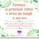 Conheça as principais folhas e ervas de Xangô e seu uso