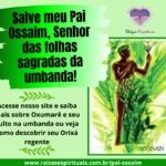 Salve meu Pai Ossaim, Senhor das folhas sagradas da umbanda!