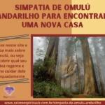 Simpatia de Omulú Andarilho para encontrar uma nova casa