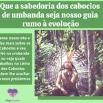 Que a sabedoria dos caboclos de umbanda seja nosso guia até a evolução