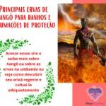 Principais ervas de Xangô para banhos e defumações de proteção